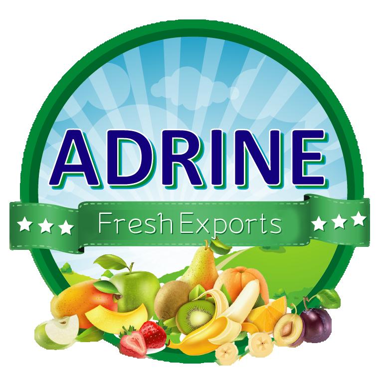 Adrine Ventures